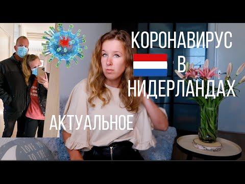 Коронавирус в Нидерландах | Актуальная информация