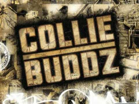 Collie Buddz  Blind To You Haterz