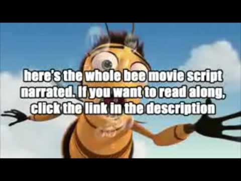 bee movie script Critics consensus: bee movie has humorous moments give the man his own movie, please, if only because it'd bee far better than this one november 6, 2007.