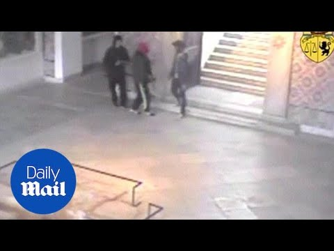 CCTV footage shows armed attackers inside Tunisia museum - Daily Mail
