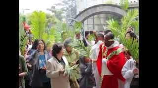 SPIRITAN IDENTITY AND VOCATION 2014 ENG