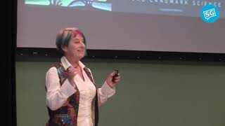 Genes, Memes and Tremes: The Future of Artificial Intelligence   Susan Blackmore