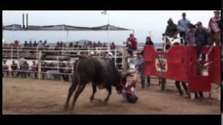 Fiestas de Atoyac Jalisco 2015 pt4/4