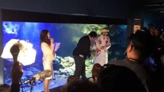 大分遅くなってしまいましたが、2016年4月20日に京都水族館で行われた「...