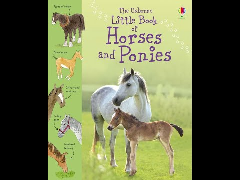 Little Book Of Horses And Ponies - Usborne