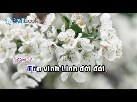 [Karaoke Thánh Ca HTTL-VN] 039 - Tôn Vinh Ba Ngôi - Salibook
