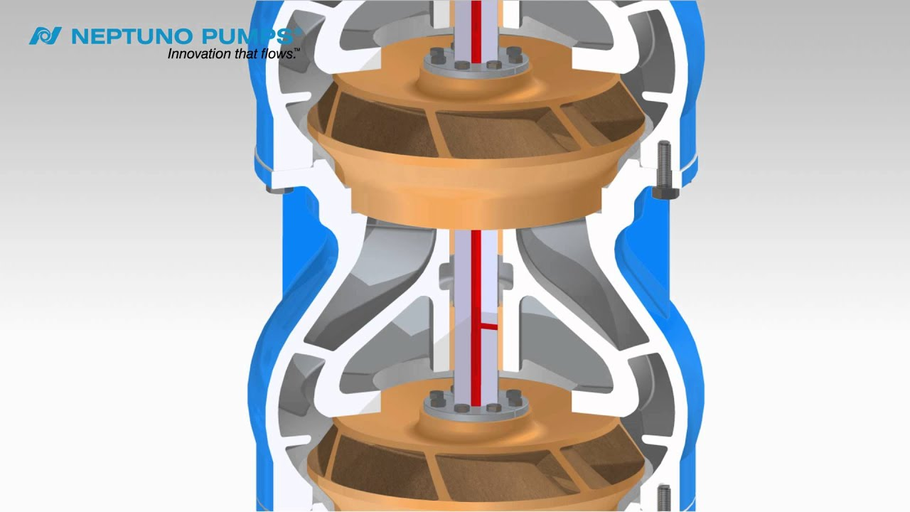 Neptuno Pumps 174 Vertical Turbine Pump Enclosed Shaft