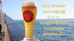 CALDES VAIZEN - Das spritzige, bernsteinfarbige Hefe-Weizen aus Leipzig