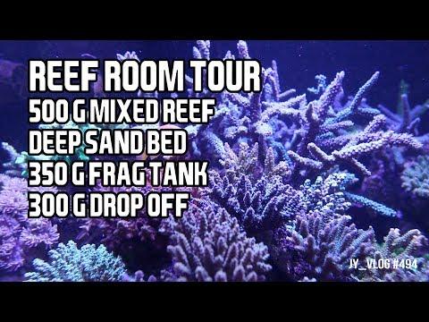 1150 Gallon Reef Tank Room Tour