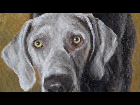 Dog portraits, oil painting of two Weimaraner-Labrador mix, time-lapse,  speed-painting