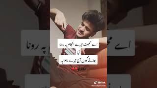 Hik Yaar cha laya a nashya ty Ch.zulqarnain25 sikander Emotional tiktok videos