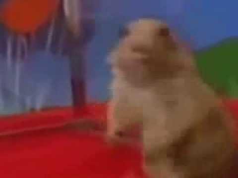 Dramatic Chipmunk (original)