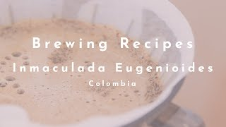 Inmaculada Eugenioides (Colombia) video