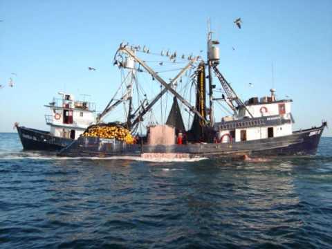 Resultado de imagen de imagen de un barco sardinero