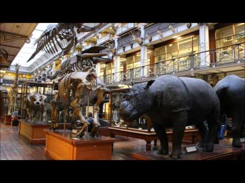 7. Lost in time | Dublin's museums