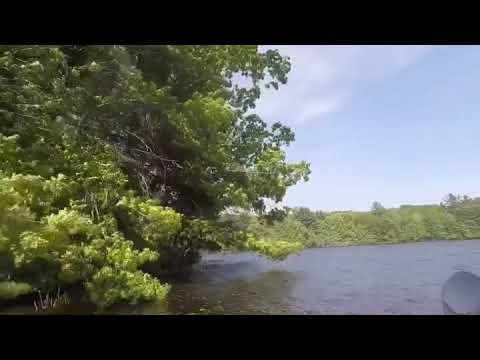 Lake Wintergreen Kayaking