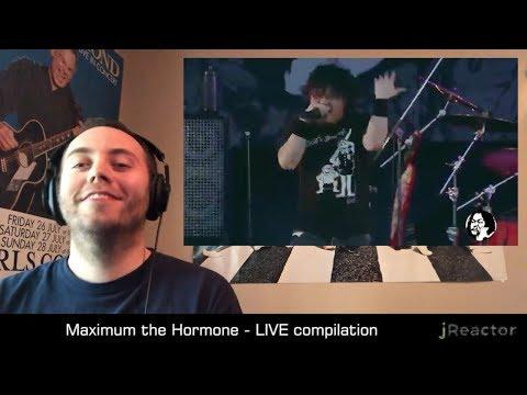 Maximum The Hormone - Live Compilation REACTION!