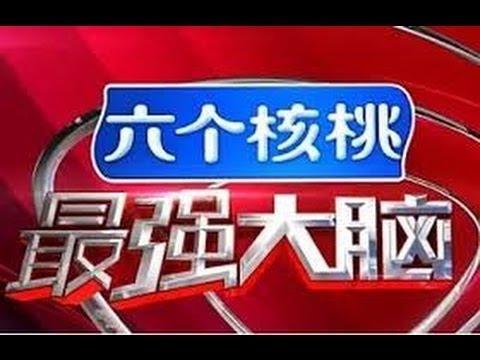 最强大脑 第三季 20160318期 中国vs日本 完整版