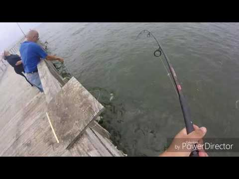 Pier fishing for bluefish in North North Jersey