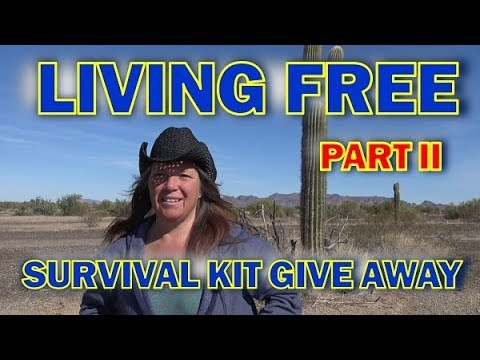 Part Two: The BEST Free RV And Van Camping Tips