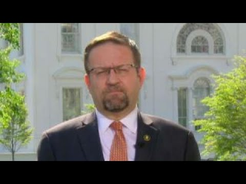 Sebastian Gorka: National interest must trump charity