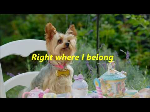 Pup Star - Tiny - Right Where I Belong - Lyrics!