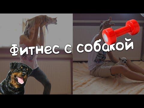 Брат и сестра Порно инцест онлайн, инцест видео ролики