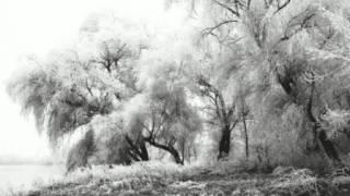 Northern Frost  - Unsere Stärke ist unser Sieg