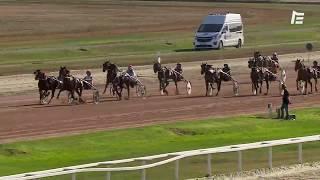 Vidéo de la course PMU 42EME GRAND PRIX DU SUD-OUEST - PRIX PARIS-TURF