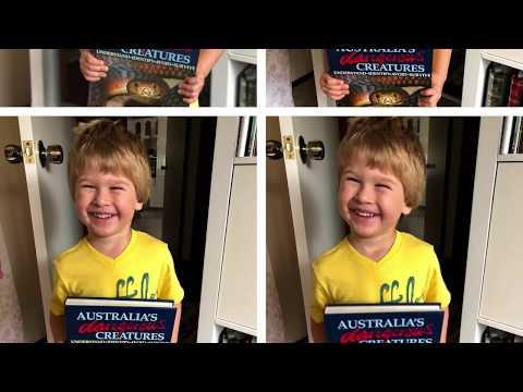 SYDNEY ROCK POOLS & SEA LIFE SYDNEY AQUARIUM REVIEW