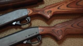 Our shotguns for Dove season