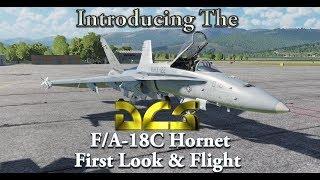 Introducing the DCS F/A-18C Hornet - First Look & Flight