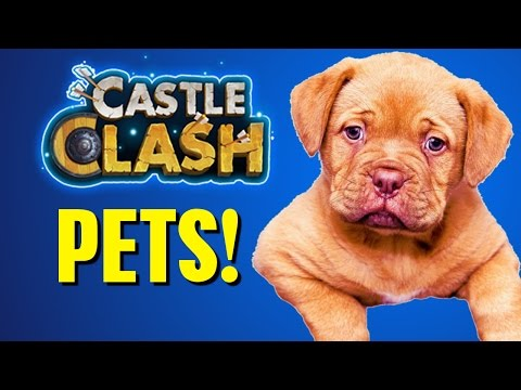 Castle Clash PETS?! - Episode 55