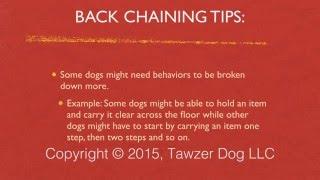 Using Back Chaining To Train Tricks, Dog Sports And Real World Behaviors - Pamela Johnson