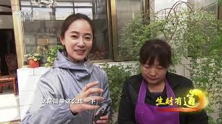 《生财有道》 20201229 生态山村好味道 旅游创出新财富| CCTV财经 - YouTube