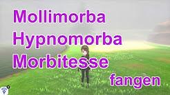Mollimorba, Hypnomorba und Morbitesse fangen (Schwert) | Pokemon Schwert und Schild