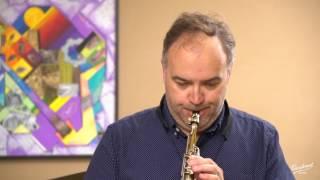 Sax sopranino Adolphe Sax EN Concerto pour hautbois en ré mineur (1er mvt) . Ludwig August Lebrun