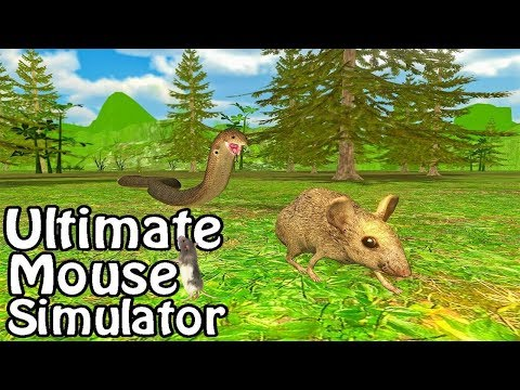 🐭Ultimate Mouse Simulator-By Glufun Games-Android