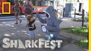 Meet SharkFest's Shark on the Street | Sharkfest