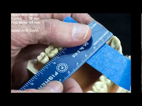 Tutorial 01: Measuring Dental Arch Forms