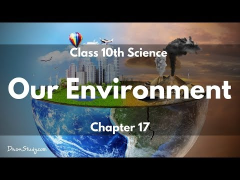 Our Environment : CBSE Class 10 Science (Biology)
