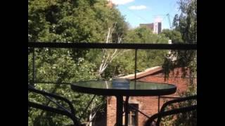Прекрасный вид с балкона Переулок Воробьева 9/11 во дворик(Больше информации у нас на сайте: http://www.elitki.com/, http://www.elitki.net (http://www.elitki.org-аренда на длительный срок) тел/viber/wat`s..., 2015-08-27T16:29:56.000Z)