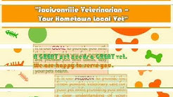 Jacksonville Veterinarians - The Best Veterinarians in Jacksonville Fl