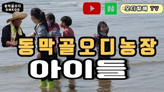 오디할배와 동막골오디농장 아이들