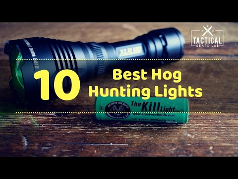10 Best Hog Hunting Lights - Tactical Gears Lab 2020