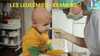 LES LEUCÉMIES - EXAMENS