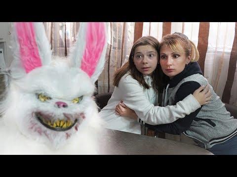 Кролик - убийца в реальной жизни. СТРАШИЛКА