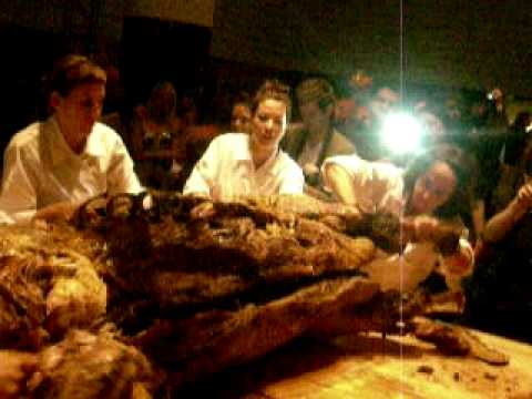 female cannibals fantasy