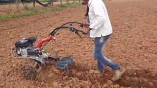 VST Pubert Maestro 55P Weeder With Cultivator And Case Wheel