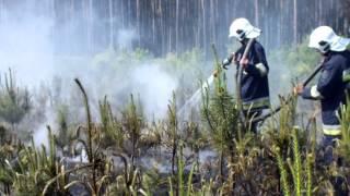 OSP Sipiory - Duży pożar lasu w Nadleśnictwie Studzienki 28.05.2012